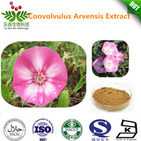 Pure nature convolvulus arvensis extract
