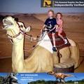 Mi dino- de fibra de vidrio equipo de fabricación de los animales de camellos de la vida figura de tamaño
