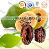 100% original herbla plant raw material Comman Floweringquince Fruit