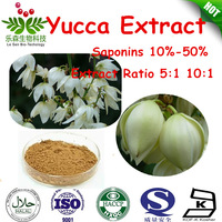factory supply yucca extract powder