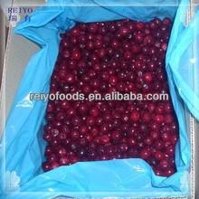 IQF frozen sour cherries