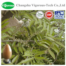 Organic Cassia Nomame Extract/Cassia Nomame Extract powder/cassia nomame p.e