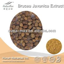 NutraMax Supply-Java Brucea Extract/Java Brucea Extract Powder/Natural Java Brucea Extract