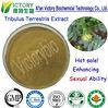 Tribulus Terrestris extract herbal medicine to enlarge penis 40% USD 9 a kilo