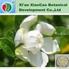 Natural Cape Jasmine Fruit Extract Powder,Cape Jasmine Fruit P.E.