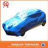 China supplier,folding pe tarpaulin car cover