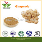 2014 New Arrival Best Quality Ginger Root Extract Zingiber officinale Extract Gingerols