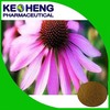 high quality echinacea purpurea extract with best price