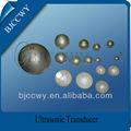 de cerámica piezoeléctrica elemento