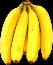 Best Quality Bananas