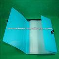 2014! Cualquier color fabricante precio documento de plástico carpeta de archivos