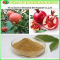 Fabrik-versorgungsmaterial granatapfelsaft Pulver/granatapfel konzentrat