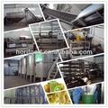 220l barris de embalagens de kiwi de polpa de linha de produção