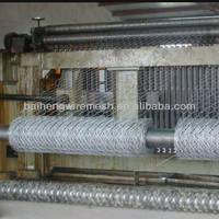 anping factory galvanized hexagonal wire mesh 10mm