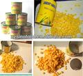 la calidad de tailandia maíz dulce en conserva