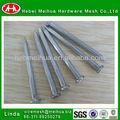 Alta qualidade de matérias-primas fio do ferro pregos/fio da bobina do prego( fabricação)