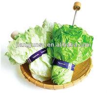Vegatable Umbrella For Plants