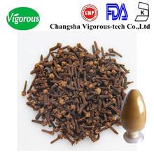 clove concentrate/cloves p.e./cloves extract powder 10:1