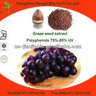 grape seed extract OPC