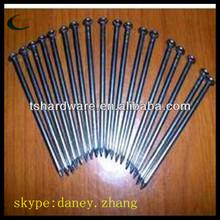electro galvanized common iron nails coils