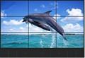 55 بوصة lcd التلفزيون مع الفيديو الجدار سوبر الحافة الضيقة 5.3mm did سامسونج لوحة