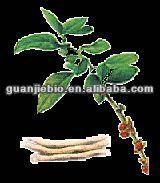 High Quality 100% Natural Ashwagandha Root Extract