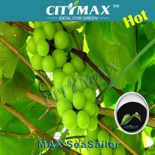 Nature Organic Alga Extract Fertilizer