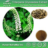 100% Natural Black Cohosh Extract Triterpene Glycosides 2.5%,4:1~20:1--NutraMax Supplier