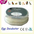 alibabaのウェブサイト販売のための小さなdfi002アヒル卵インキュベーター