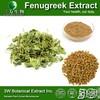 Halal&Kosher Fenugreek Extract 10:1/Fenugreek Powder Extract/Fenugreek Saponins