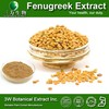 GMP&ISO Fenugreek Extract Powder 50% Saponins 4-Hydroxyisoleucine