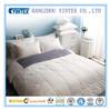 Soft White Warm Single 15% Washing Goose Down Duvet China Factory