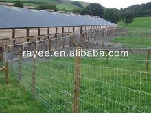 Hot Sales Galvanized / PVC coted Temporary Fence low price and high quality / valla de la construccion portatil