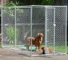 Chain Link Dog Kennel Cage china supplier