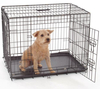 Doggie Solutions Economy Lightweight Iron Dog Cage