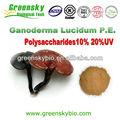 100% natrual extracto de reishi ganoderma lucidum