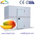 Panasonic frigorífico para manga maturação