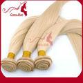 Carina les produits beaux cheveux pas cher remy indiens 100% non transformés couleur fantaisie cheveux