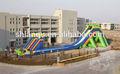 Tobogan de agua inflable para gran parque de atracciones de rebaja