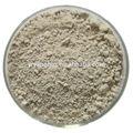 Fornecer 100% natural de alta qualidade de amilase fúngica