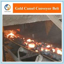 Hot sale conveyor belt high temperature