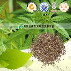 Pure herb medicine thorn