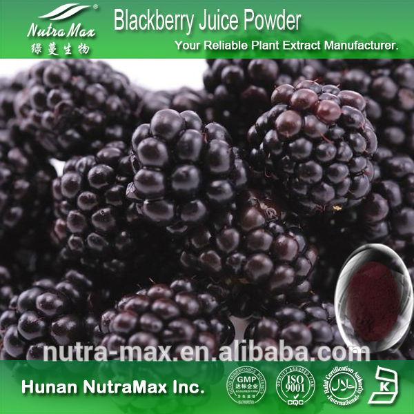 Gıda ve içecek böğürtlen meyve tozu böğürtlen suyu tozu