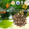 Top Grade Chinese Herb Medicine Ramulus Cinnamomi