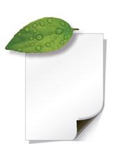 magnetic printable sheet
