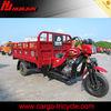 new cargo tricycle/250cc trike three wheel motorcycle/3 wheel trike