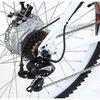 Electric Bike 1000W TDE06Z NEW Litium Battery IN FRAME