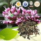 Pure herbal medicine Perrin