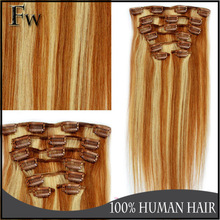 Faceworld hot sell 30 inch human hair extensions clip in