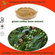 bulk powder green coffee bean extract